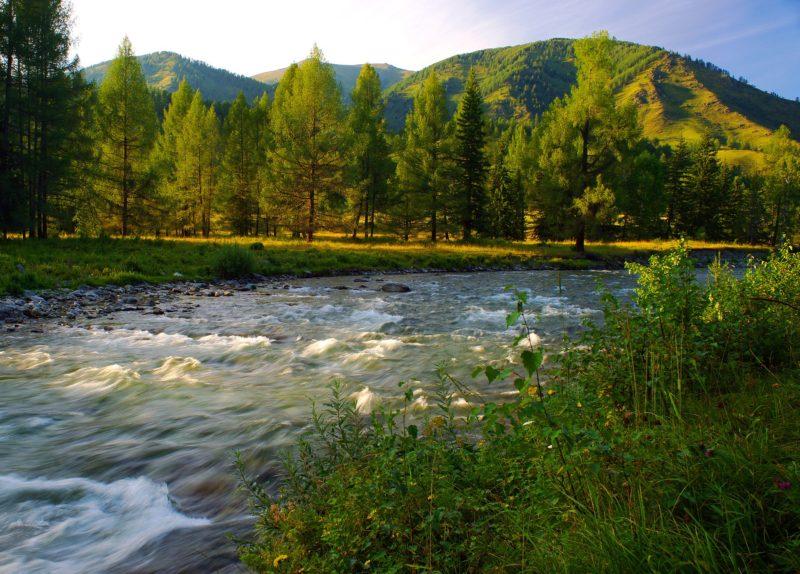 river-2107535_1920