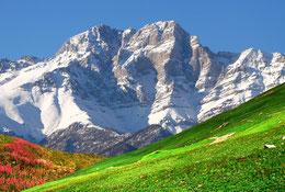ARMENIA YOGA TOUR